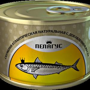 skumbriya_3D